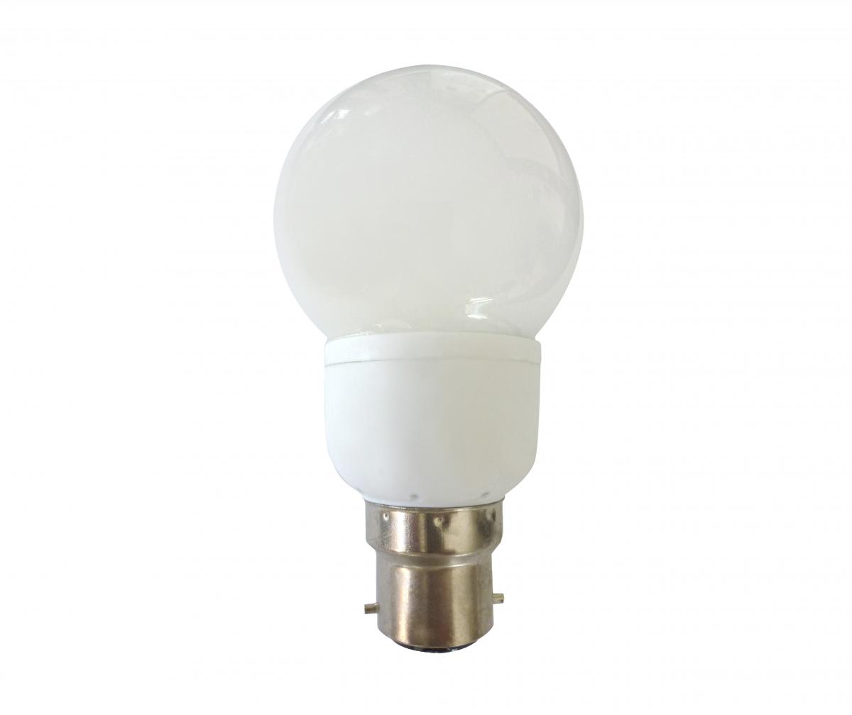 2.5 bulb